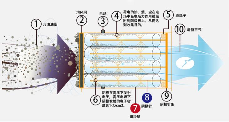 电子式空气净化机到底是怎样实现净化功能的? 四步轻松理解静电净化原理:  高压直流电场电离空气分子,产生大量游离电子和正电荷。  在电场力作用下运动,并与气流中颗粒物碰撞结合,形成荷电粒子。  荷电粒子在电场力作用下向电场正负极移动,沉积,起到除尘的作用。  高强电压能瞬间击穿细菌等细胞壁,并导致蛋白质变性(病毒为非细胞结构,只有蛋白质和核酸),失活达到灭菌效果。  静电式空气净化机的优点:  除尘效率高,一般稳当在99.